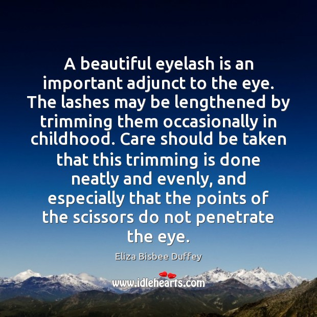 Image, A beautiful eyelash is an important adjunct to the eye. The lashes