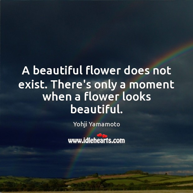 A beautiful flower does not exist. There's only a moment when a flower looks beautiful. Yohji Yamamoto Picture Quote