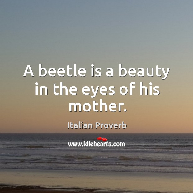 A beetle is a beauty in the eyes of his mother. Image