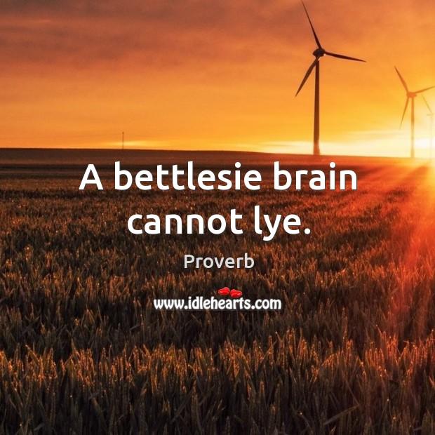 A bettlesie brain cannot lye. Image