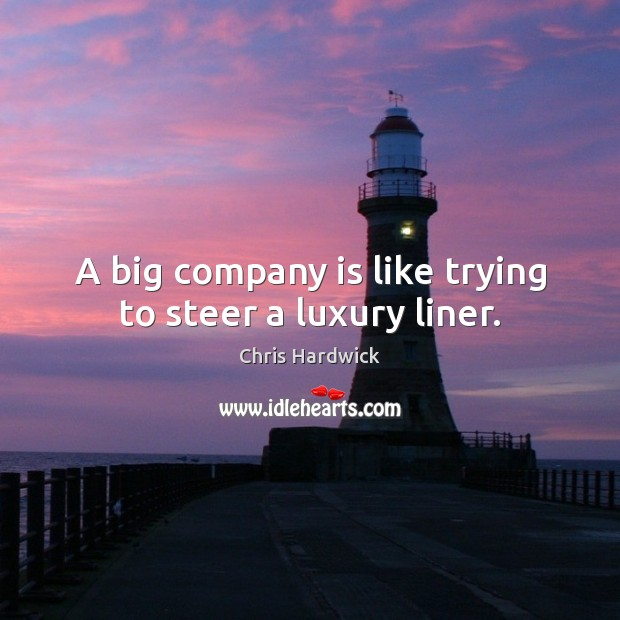 A big company is like trying to steer a luxury liner. Image