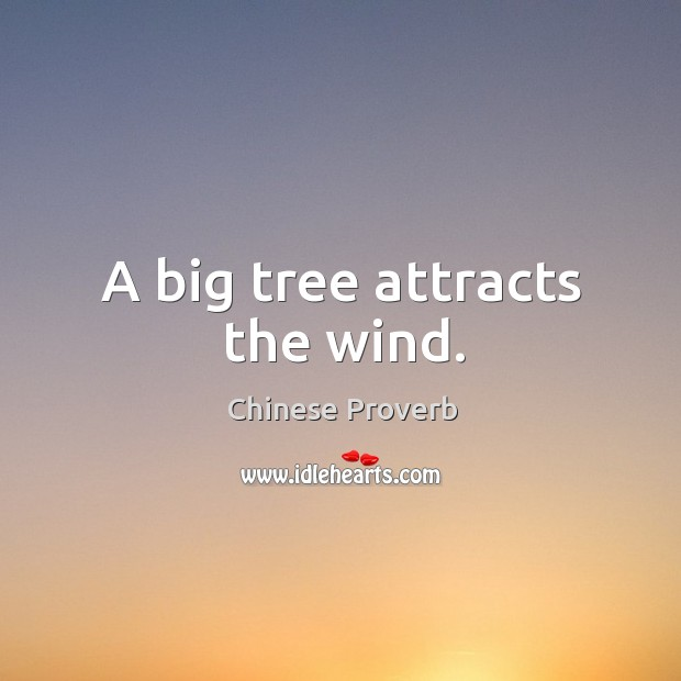 Image, A big tree attracts the wind.