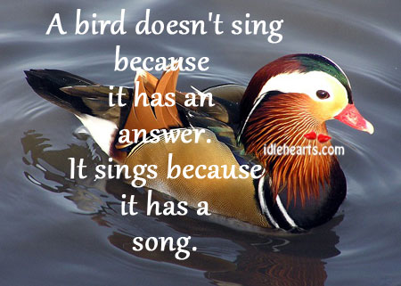 A Bird Sings Because It Has A Song.