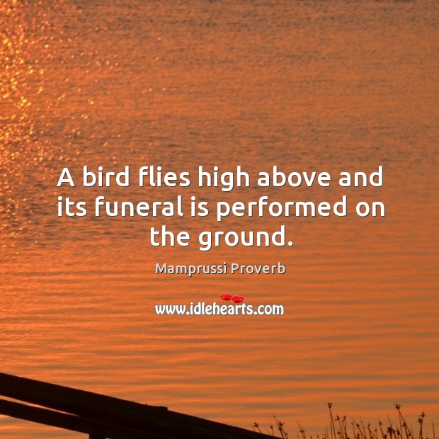 A bird flies high above and its funeral is performed on the ground. Mamprussi Proverbs Image