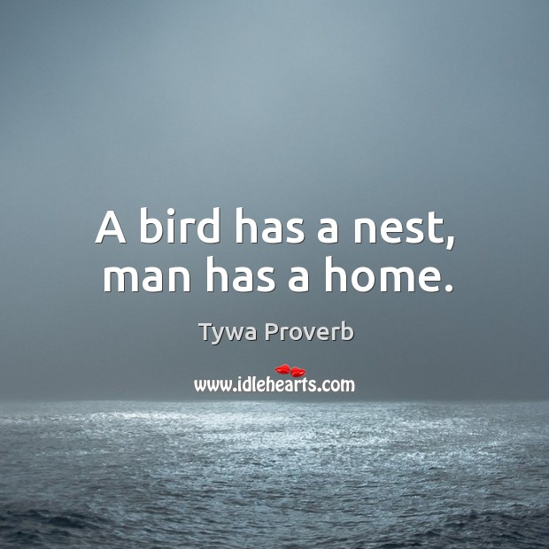 Image, A bird has a nest, man has a home.