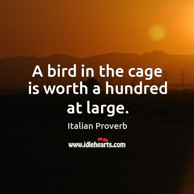 Image, A bird in the cage is worth a hundred at large.