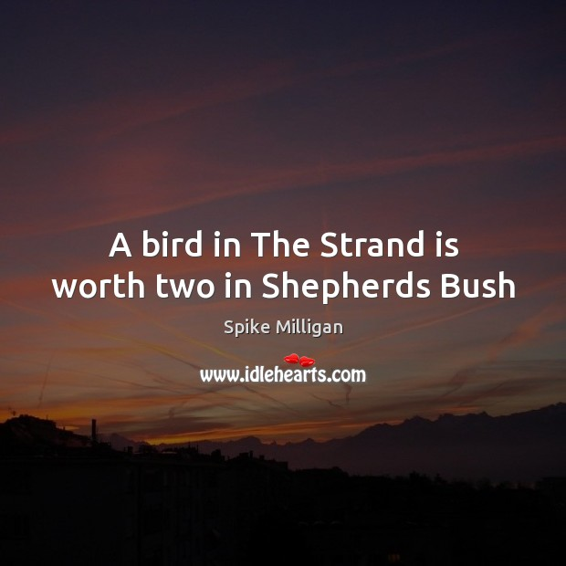 Image, A bird in The Strand is worth two in Shepherds Bush