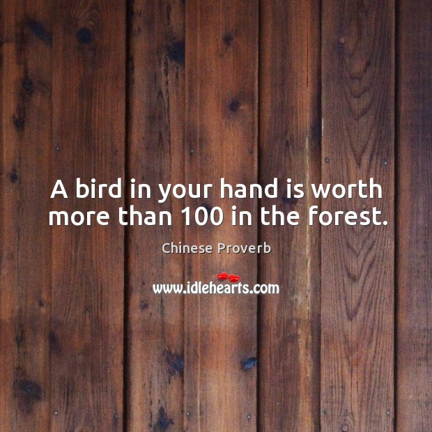 Image, A bird in your hand is worth more than 100 in the forest.