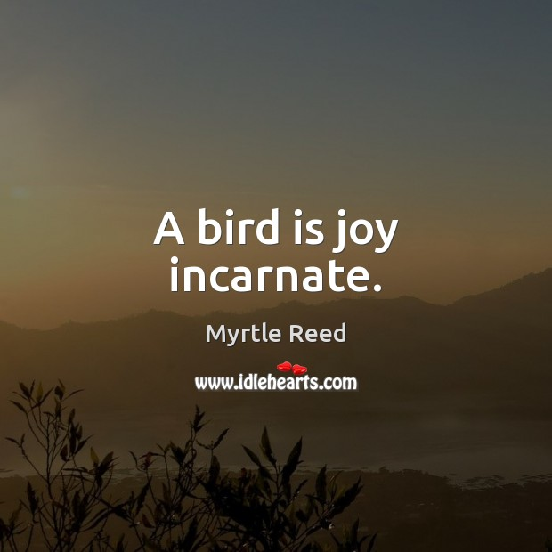 A bird is joy incarnate. Myrtle Reed Picture Quote