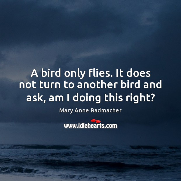A bird only flies. It does not turn to another bird and ask, am I doing this right? Mary Anne Radmacher Picture Quote