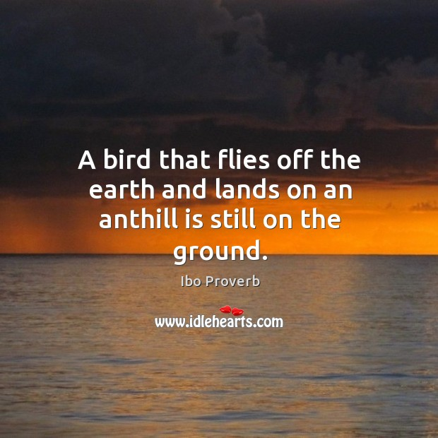 A bird that flies off the earth and lands on an anthill is still on the ground. Ibo Proverbs Image