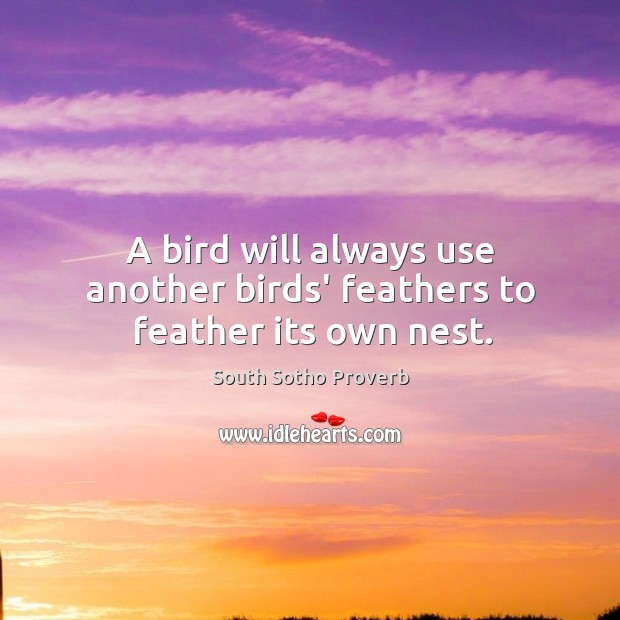 A bird will always use another birds' feathers to feather its own nest. South Sotho Proverbs Image
