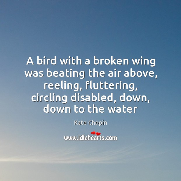 Image, A bird with a broken wing was beating the air above, reeling,