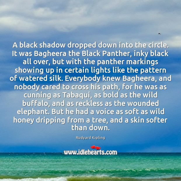 A black shadow dropped down into the circle. It was Bagheera the Rudyard Kipling Picture Quote