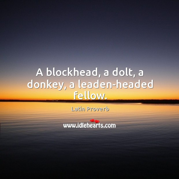 Image, A blockhead, a dolt, a donkey, a leaden-headed fellow.