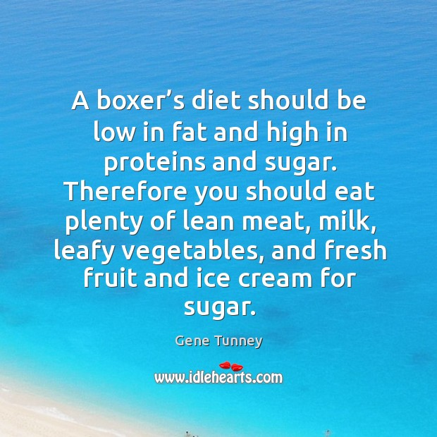 A boxer's diet should be low in fat and high in proteins and sugar. Image