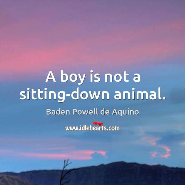 Image, A boy is not a sitting-down animal.