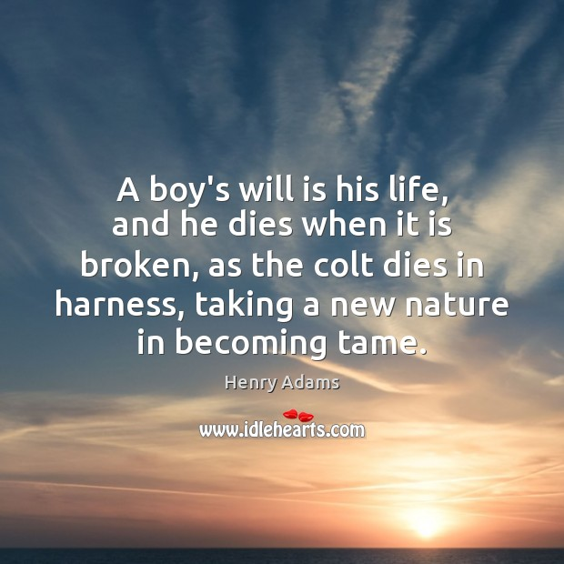 A boy's will is his life, and he dies when it is Henry Adams Picture Quote