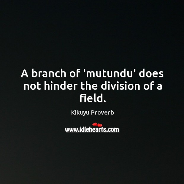 A branch of 'mutundu' does not hinder the division of a field. Kikuyu Proverbs Image