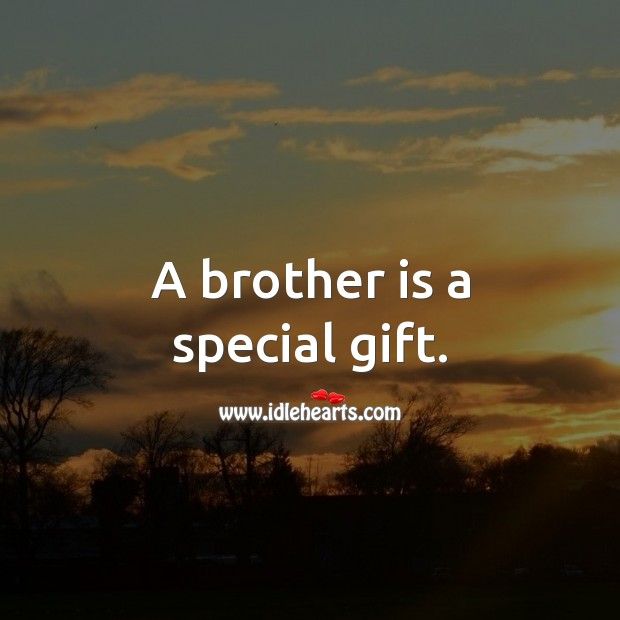 A brother is a special gift. Image