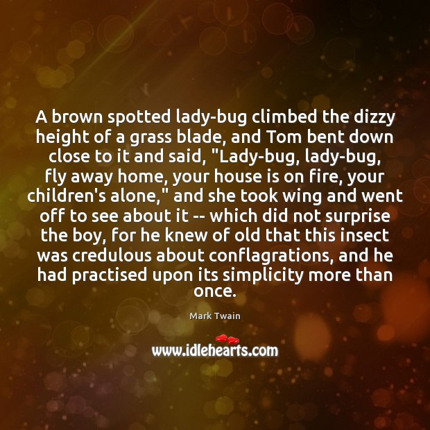 A brown spotted lady-bug climbed the dizzy height of a grass blade, Image