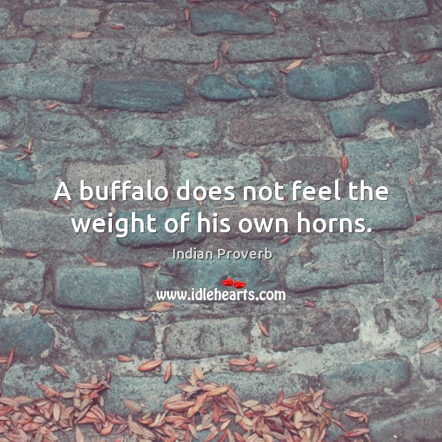 A buffalo does not feel the weight of his own horns. Image