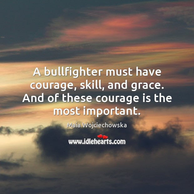 A bullfighter must have courage, skill, and grace. And of these courage Image