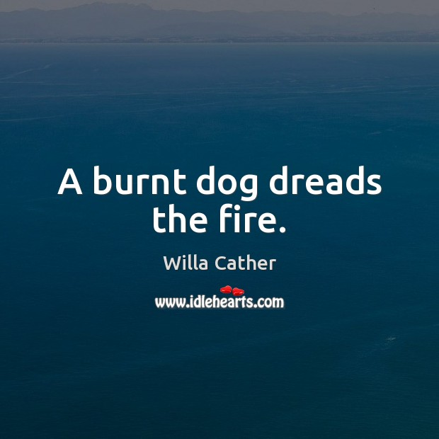 Image, A burnt dog dreads the fire.