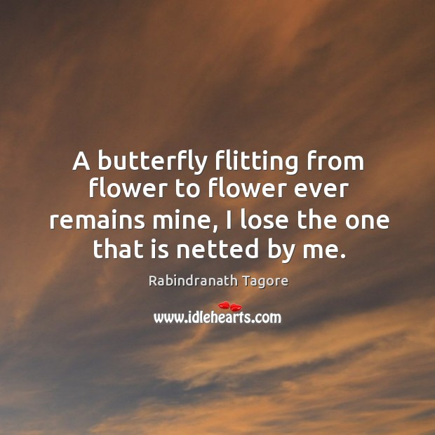 Image, A butterfly flitting from flower to flower ever remains mine, I lose