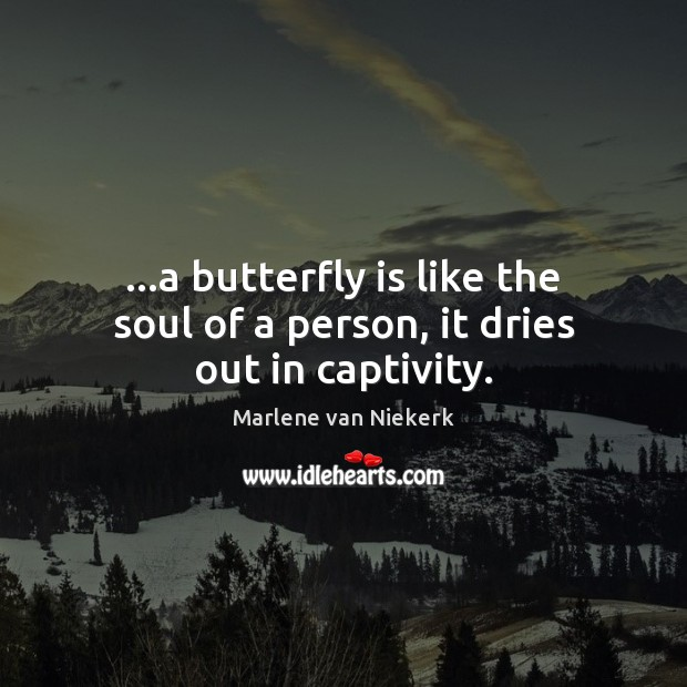 …a butterfly is like the soul of a person, it dries out in captivity. Image