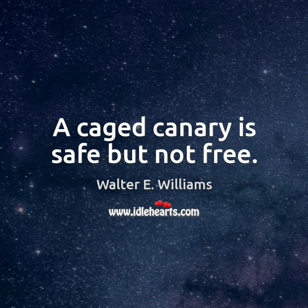A caged canary is safe but not free. Walter E. Williams Picture Quote