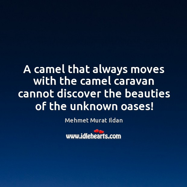 A camel that always moves with the camel caravan cannot discover the Image
