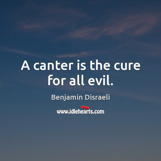 Image, A canter is the cure for all evil.
