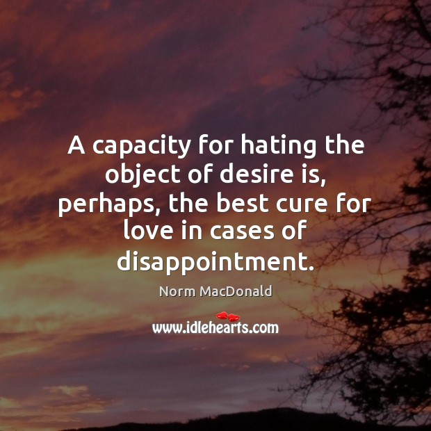 A capacity for hating the object of desire is, perhaps, the best Desire Quotes Image
