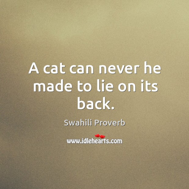 A cat can never he made to lie on its back. Image