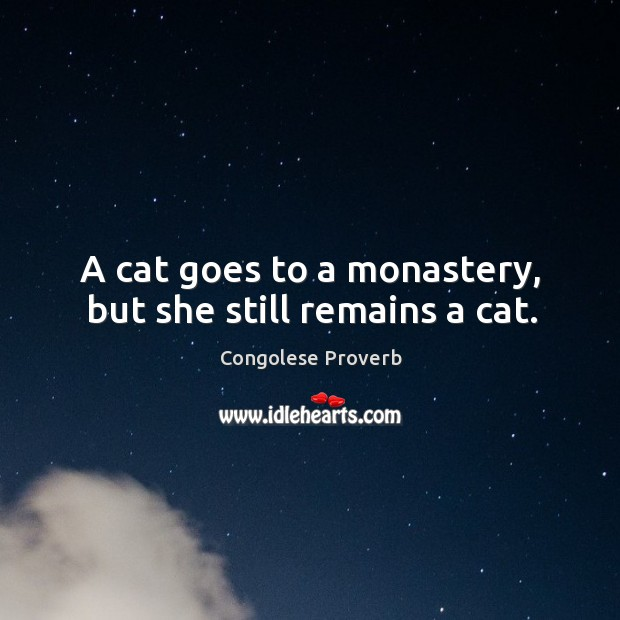 A cat goes to a monastery, but she still remains a cat. Congolese Proverbs Image