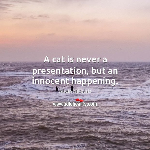 Image, A cat is never a presentation, but an innocent happening.