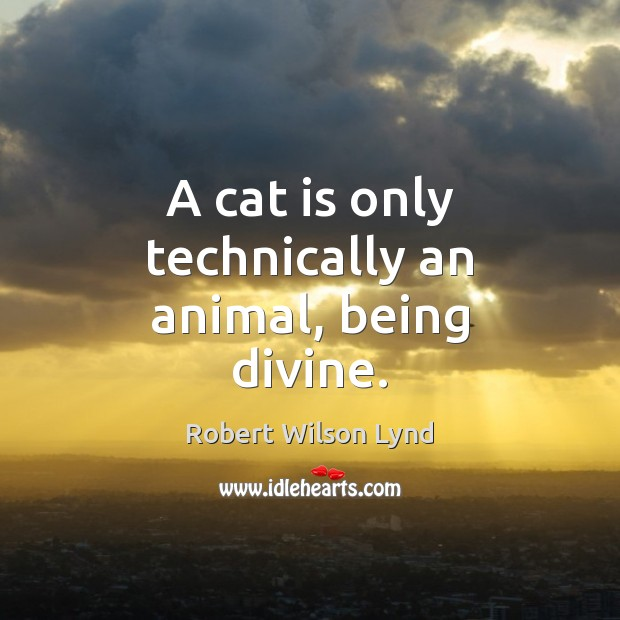 A cat is only technically an animal, being divine. Image