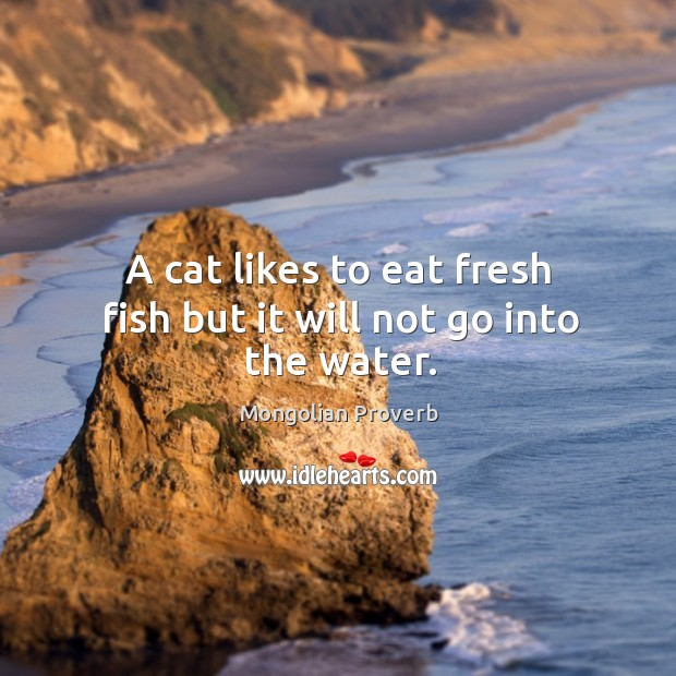 A cat likes to eat fresh fish but it will not go into the water. Mongolian Proverbs Image