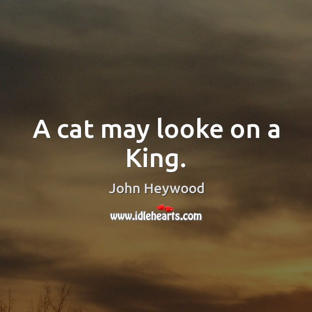 A cat may looke on a King. John Heywood Picture Quote