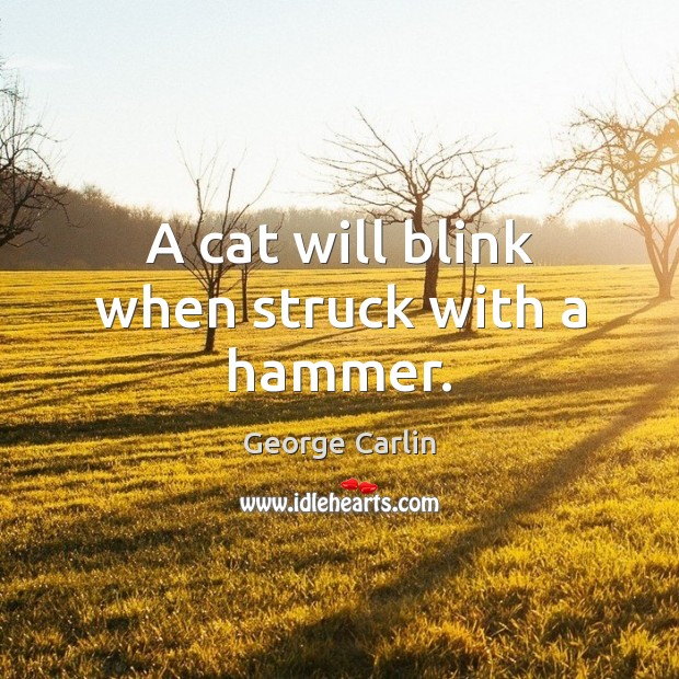 A cat will blink when struck with a hammer. George Carlin Picture Quote
