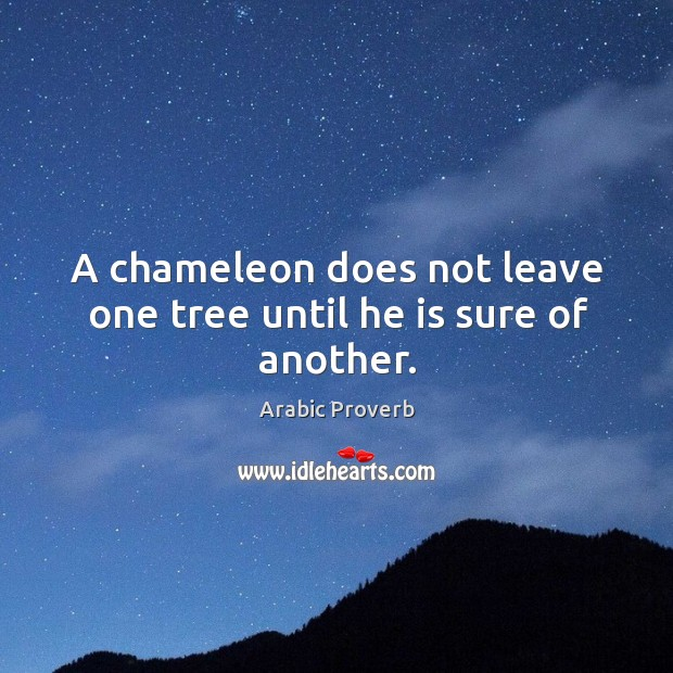 Image, A chameleon does not leave one tree until he is sure of another.