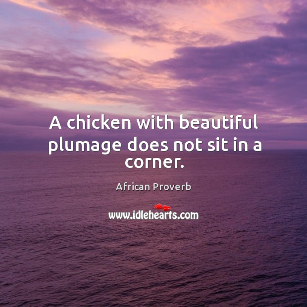 A chicken with beautiful plumage does not sit in a corner. Image