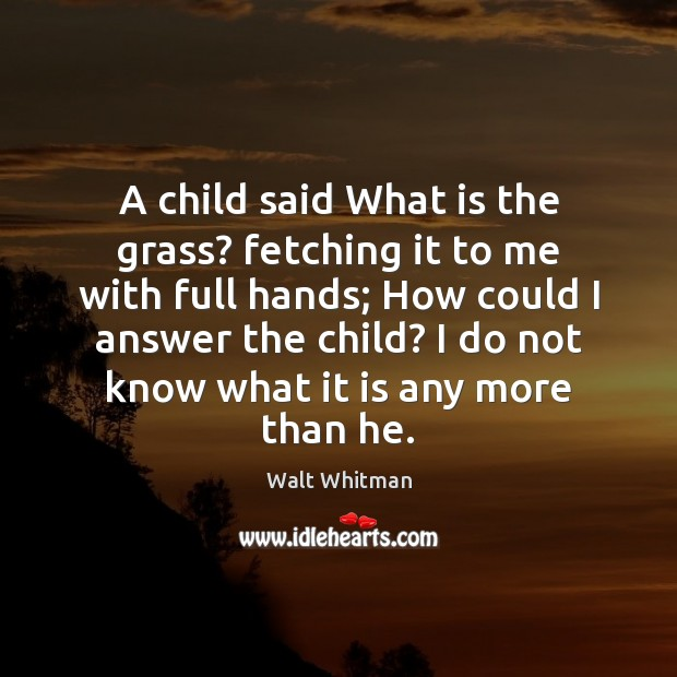 Image, A child said What is the grass? fetching it to me with