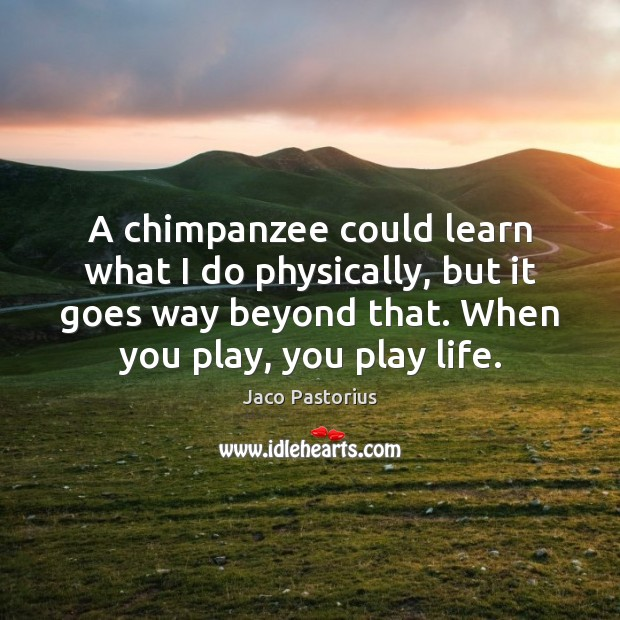 Image, A chimpanzee could learn what I do physically, but it goes way