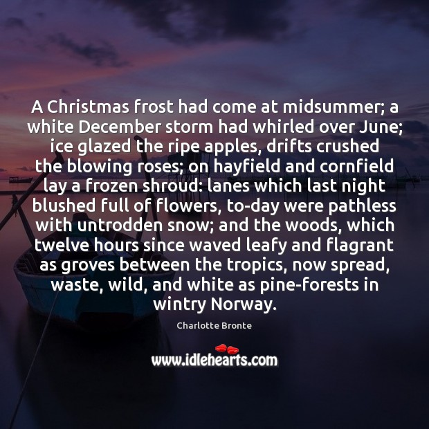A Christmas frost had come at midsummer; a white December storm had Charlotte Bronte Picture Quote