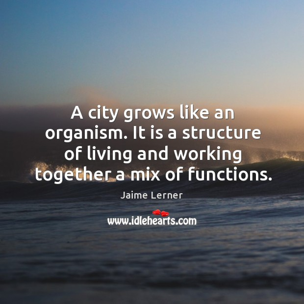 Image, A city grows like an organism. It is a structure of living