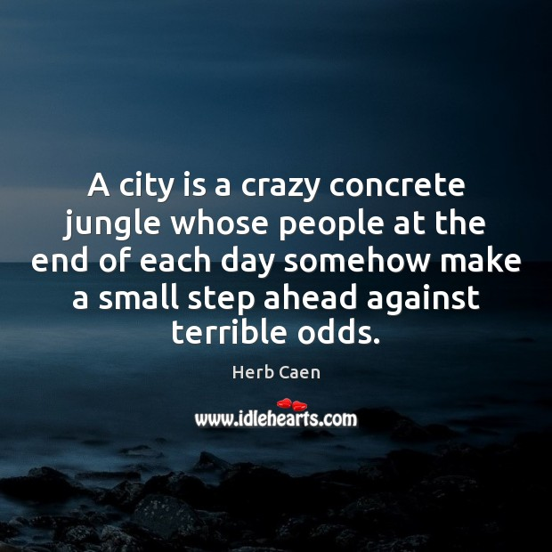 Image, A city is a crazy concrete jungle whose people at the end