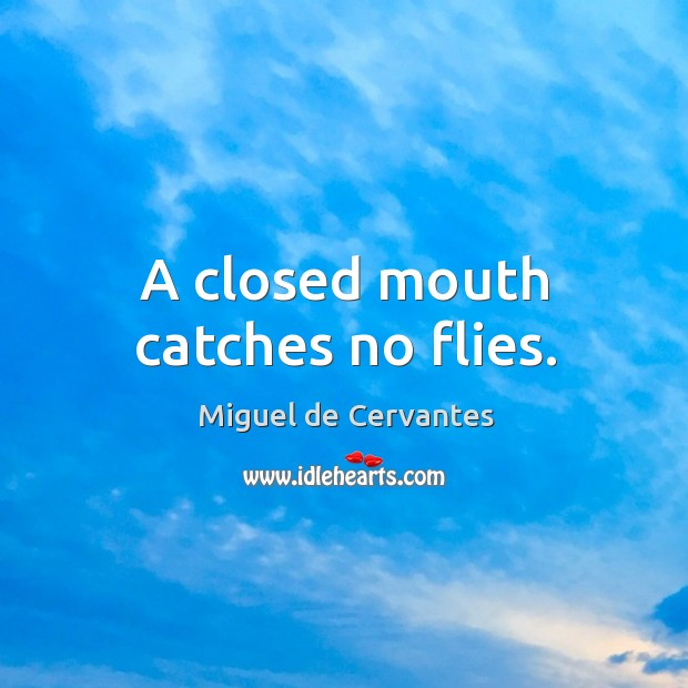 Image, A closed mouth catches no flies.