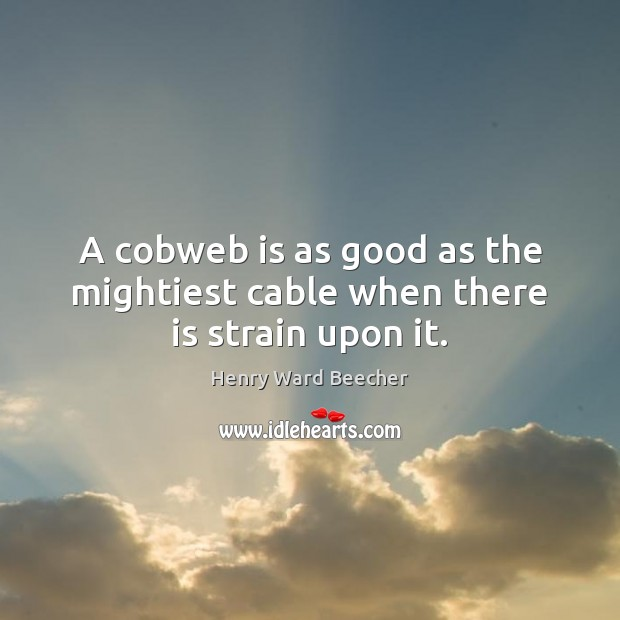 Image about A cobweb is as good as the mightiest cable when there is strain upon it.